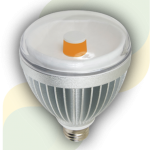 TG1A Night and Day Management Light Bulb with Background