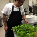Chef looking at greens in a tray.